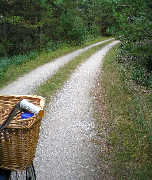 En bit vacker grusväg ute på Ryssudden, Fårö