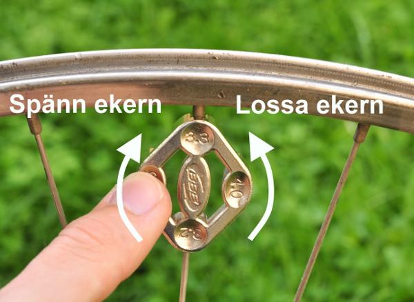 lösa ekrar cykel